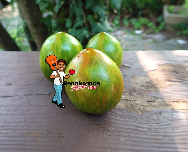 Coeur de Surpriz Tomato Image