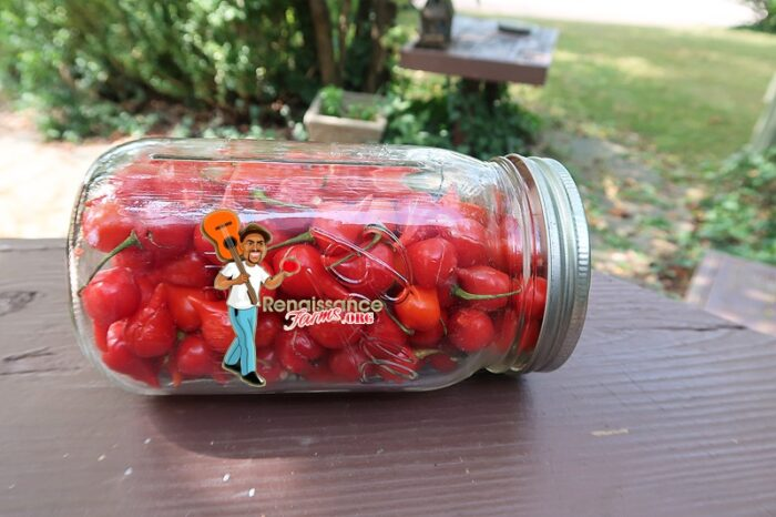Biquinho Pepper Red Pickle