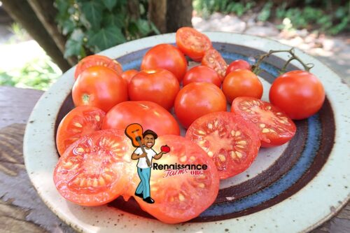 Santori Tomato Image