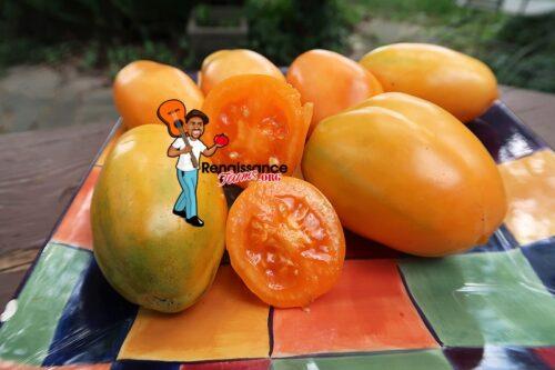 Summer Lightning Tomato Images