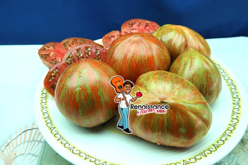 Berkley Tie Dye Heart Tomato