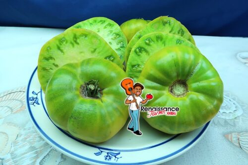 Grub's Mystery Green Tomato