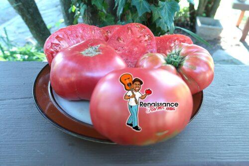 Olive Hill Tomato