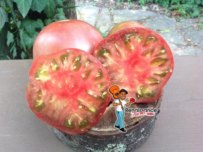 """PPP X PP""""C"""" Tomato"""