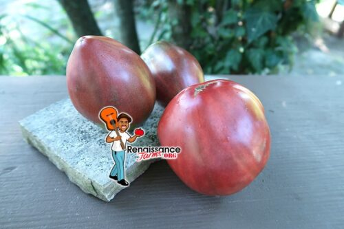 Reinhard Kraft's Purple Heart Tomato