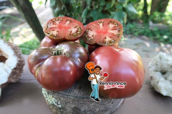 True Black Brandywine Tomato