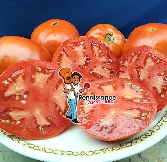 Van Wert Ohio Tomato