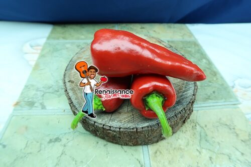 Piment d'Espelette Pepper