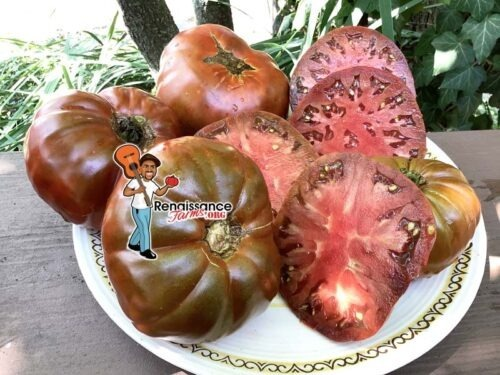 Abraham Brown Tomato