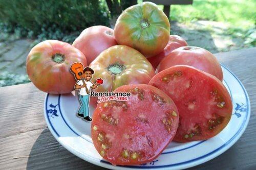 Blue Ridge Mountain Tomato