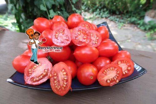 Pomodoro A Grapoli De Iverno Tomato