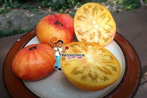 Yellow Stone Tomato